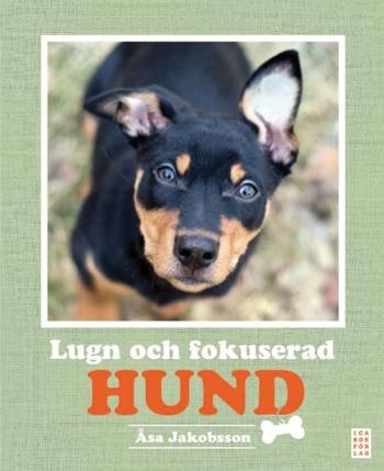 lugn_och_fokuserad_hund-jakobsson_asa-22607737-1081215162-frntl